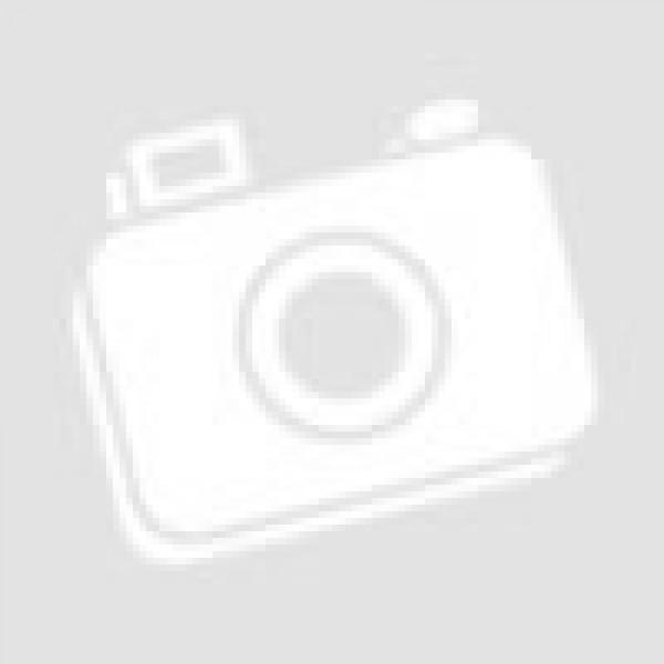 Кофр для квадроцикла - SMART 8050 / S304 -